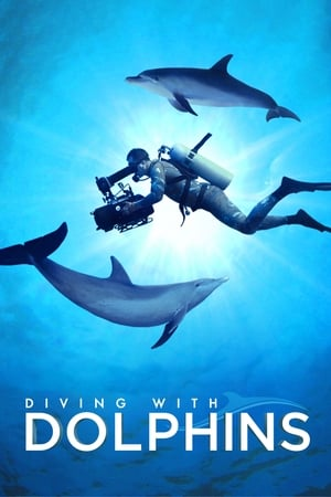 Image Diving with Dolphins