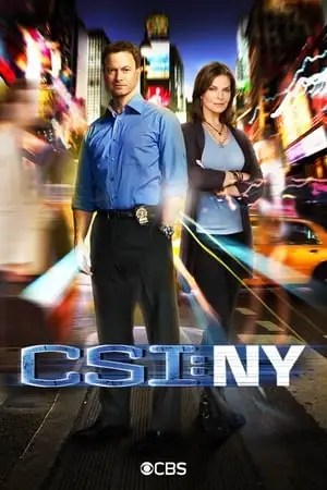 Poster CSI: NY Season 9 Today Is Life 2013