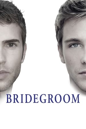 Image Bridegroom