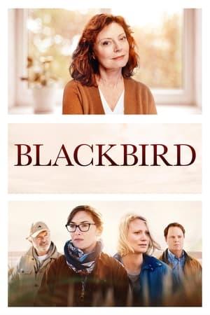 Ver Online Blackbird