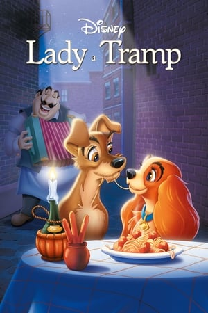 Image Lady a Tramp