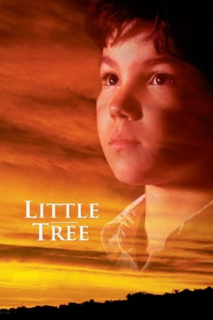 Image The Education of Little Tree