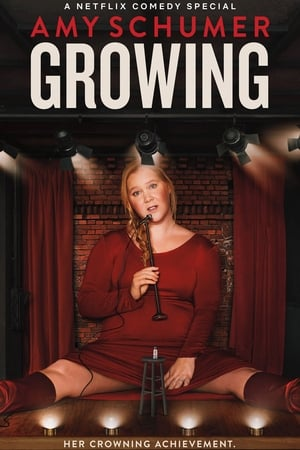 Image Amy Schumer: Growing