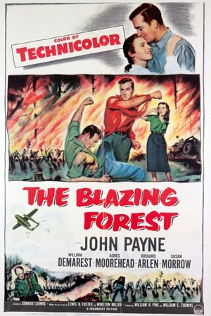 Image The Blazing Forest