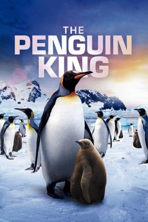 Image The Penguin King