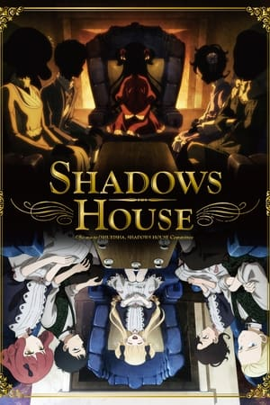 Image Shadows House
