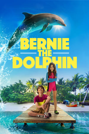 Image Bernie the Dolphin
