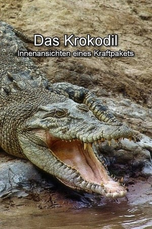 Das Krokodil - Innenansichten eines Kraftpakets