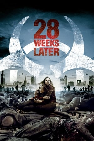 Poster 28 Weeks Later 2007