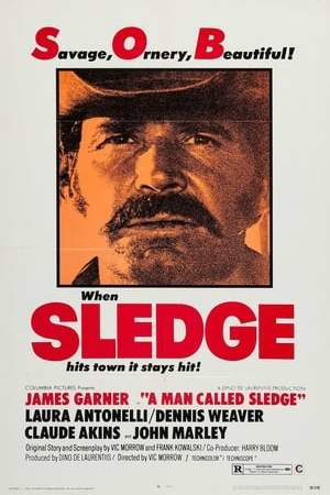 Image A Man Called Sledge