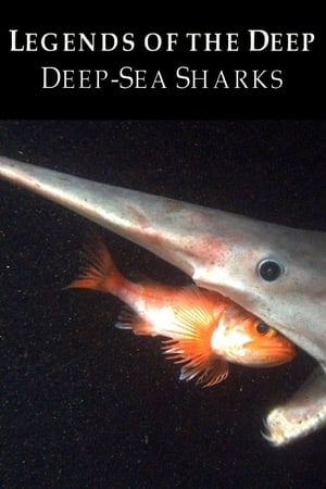 Image Legends of the Deep: Deep Sea Sharks