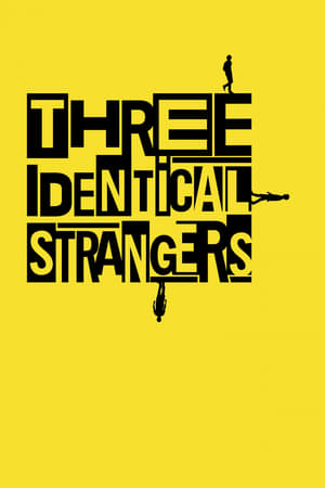 Image Three Identical Strangers