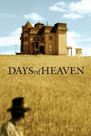 Image Days of Heaven