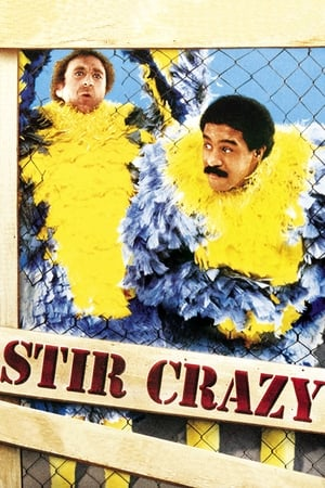 Image Stir Crazy