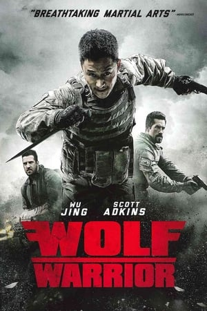 Image Wolf Warrior 3