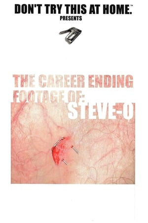 Image The Career Ending Footage of: Steve-O