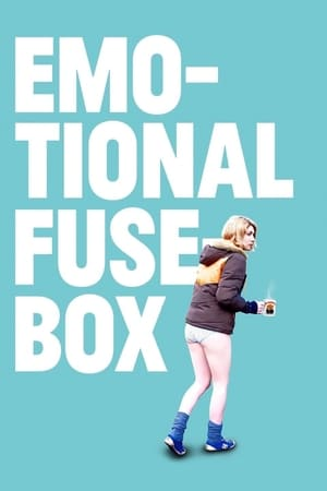 Poster Emotional Fusebox 2014
