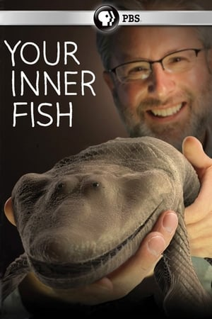 Image Your Inner Fish