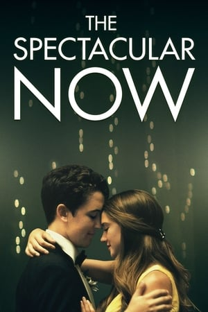 Poster The Spectacular Now 2013