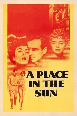 Image A Place in the Sun