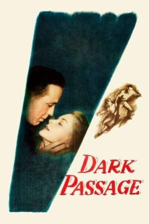 Image Dark Passage