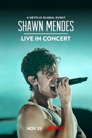 Image Shawn Mendes: Live in Concert