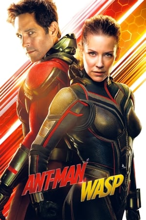 Poster Ant-Man a Wasp 2018