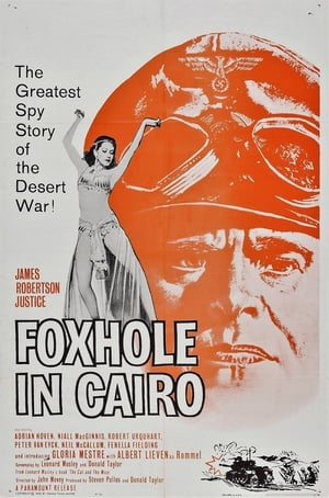 Image Foxhole in Cairo