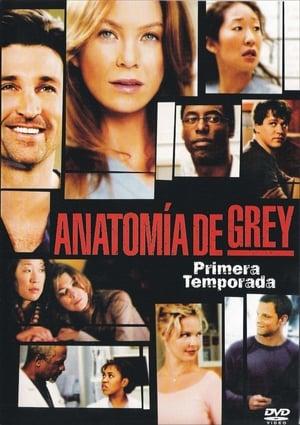 Anatomía de Grey 18x2 poster