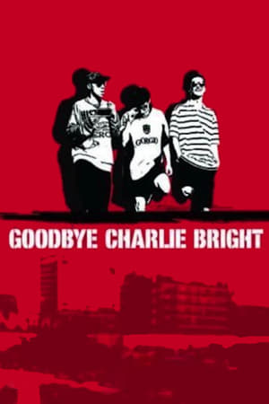 Image Goodbye Charlie Bright