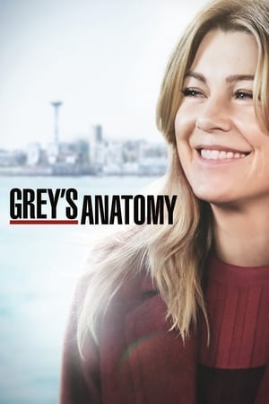 Serie Grey's Anatomy en streaming