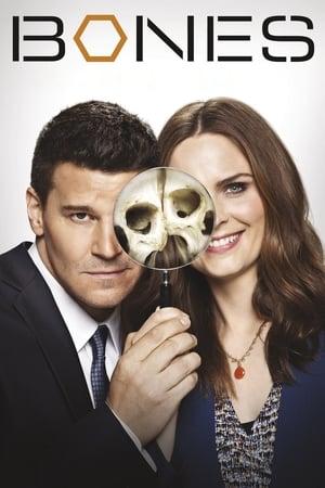 Watch Bones Season 8 HD Free TV Show