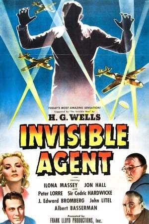 Image Invisible Agent