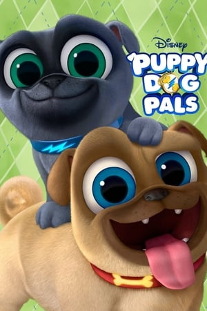 Image Puppy Dog Pals