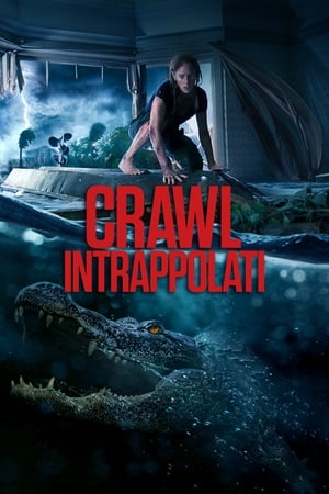 Image Crawl - Intrappolati