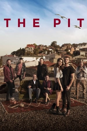 Poster The Pit 2017