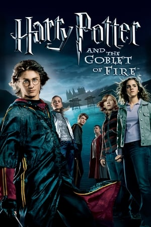 Poster Harry Potter and the Goblet of Fire 2005