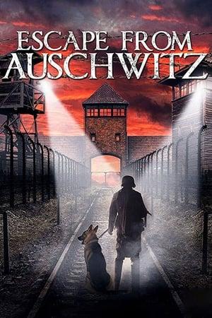 Ver Online The Escape from Auschwitz