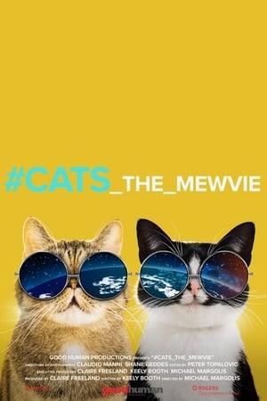Ver Online #cats_the_mewvie