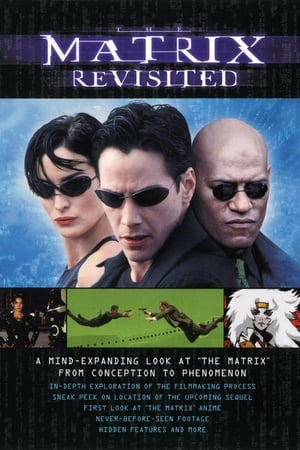 Poster The Matrix Revisited 2001