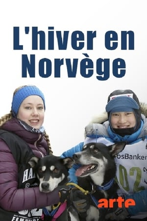 L'hiver en Norvège : la plus belle saison de l'année