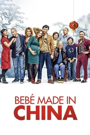 Ver Online Made in China