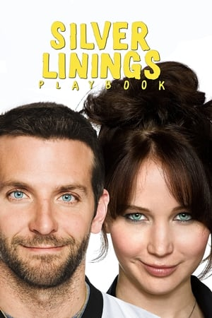 Image Silver Linings Playbook