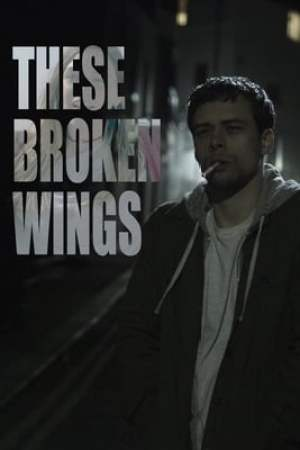 Image These Broken Wings
