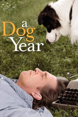 Image A Dog Year