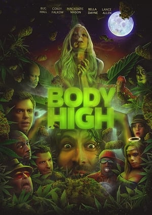 Image Body High