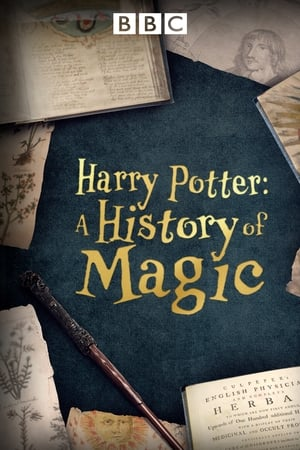 Image Harry Potter - A History Of Magic