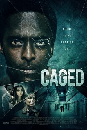Image Caged