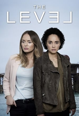 The Level poster