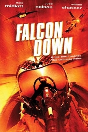 Image Falcon Down